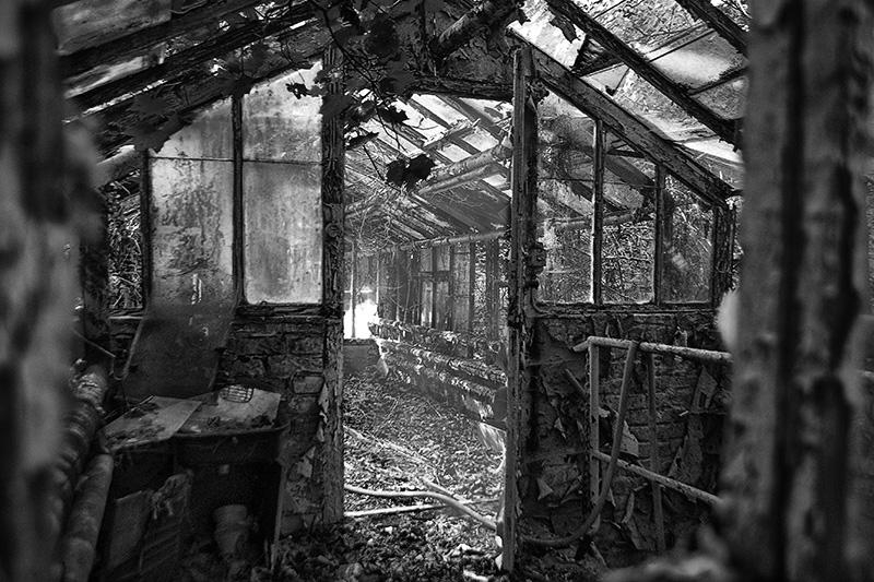 Ein verfallenes Gewächshaus hahe eine Ville mitten im Wald.