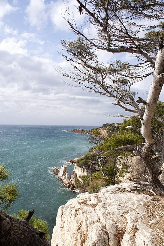 Die Steilküste bei Bandol Frankreich
