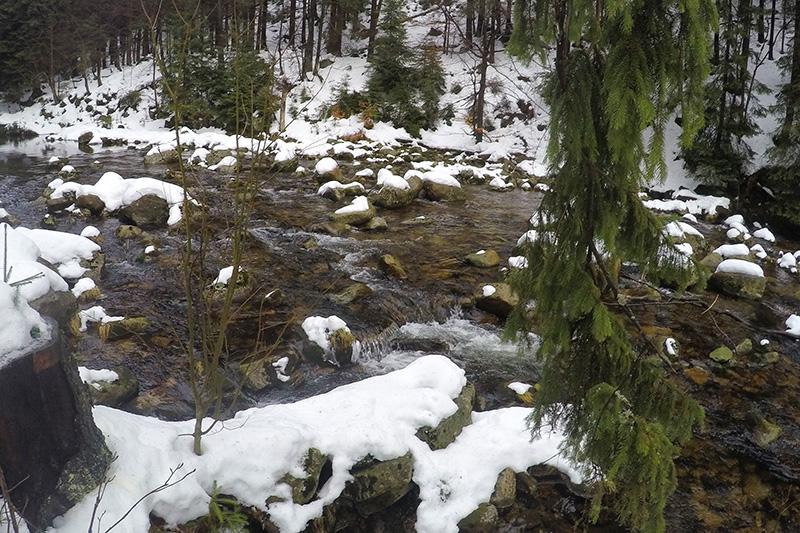 Verschneiter Flusslauf in mitten des Riesengebirges